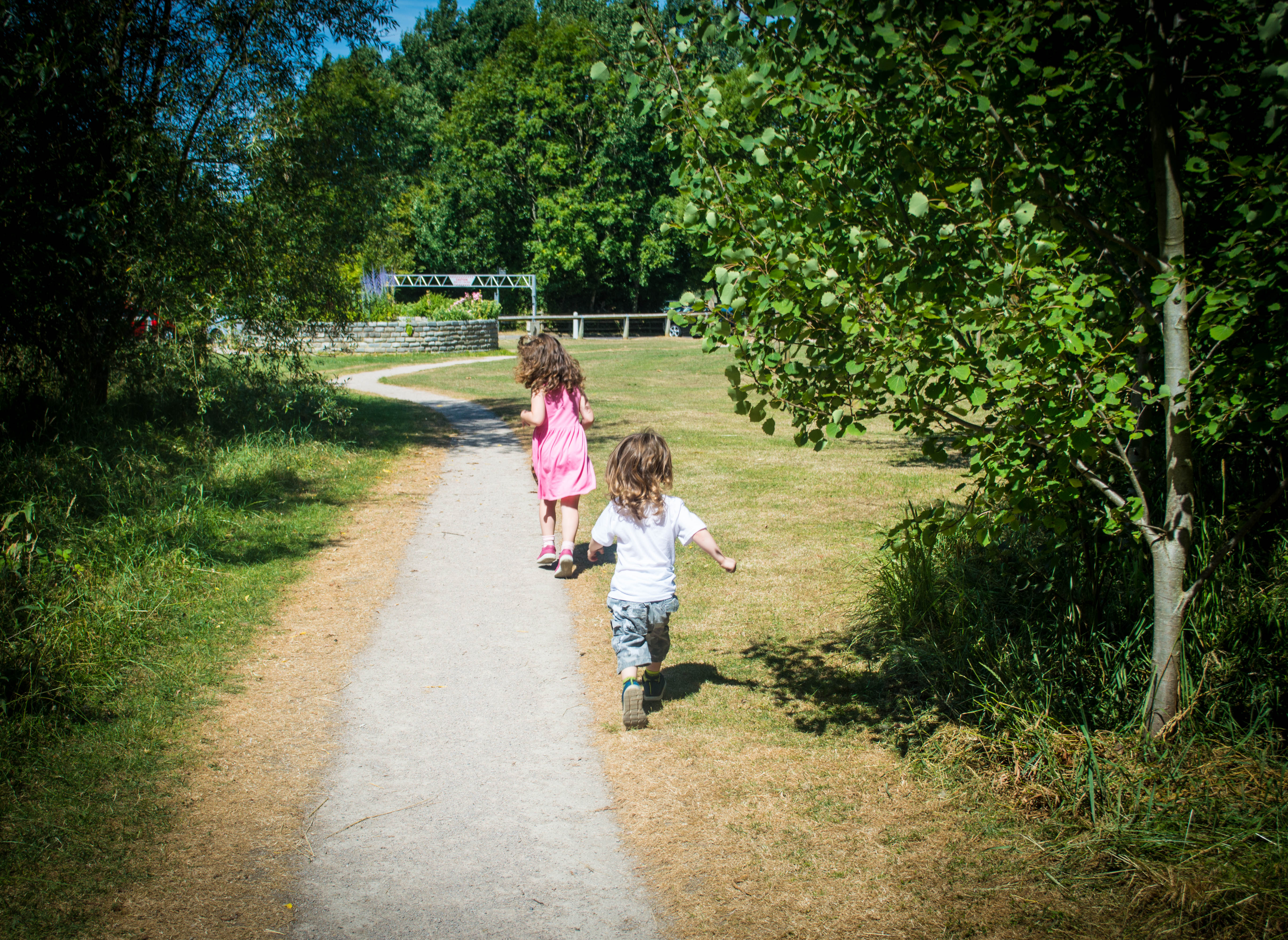 Wyre estuary country park fun at the park