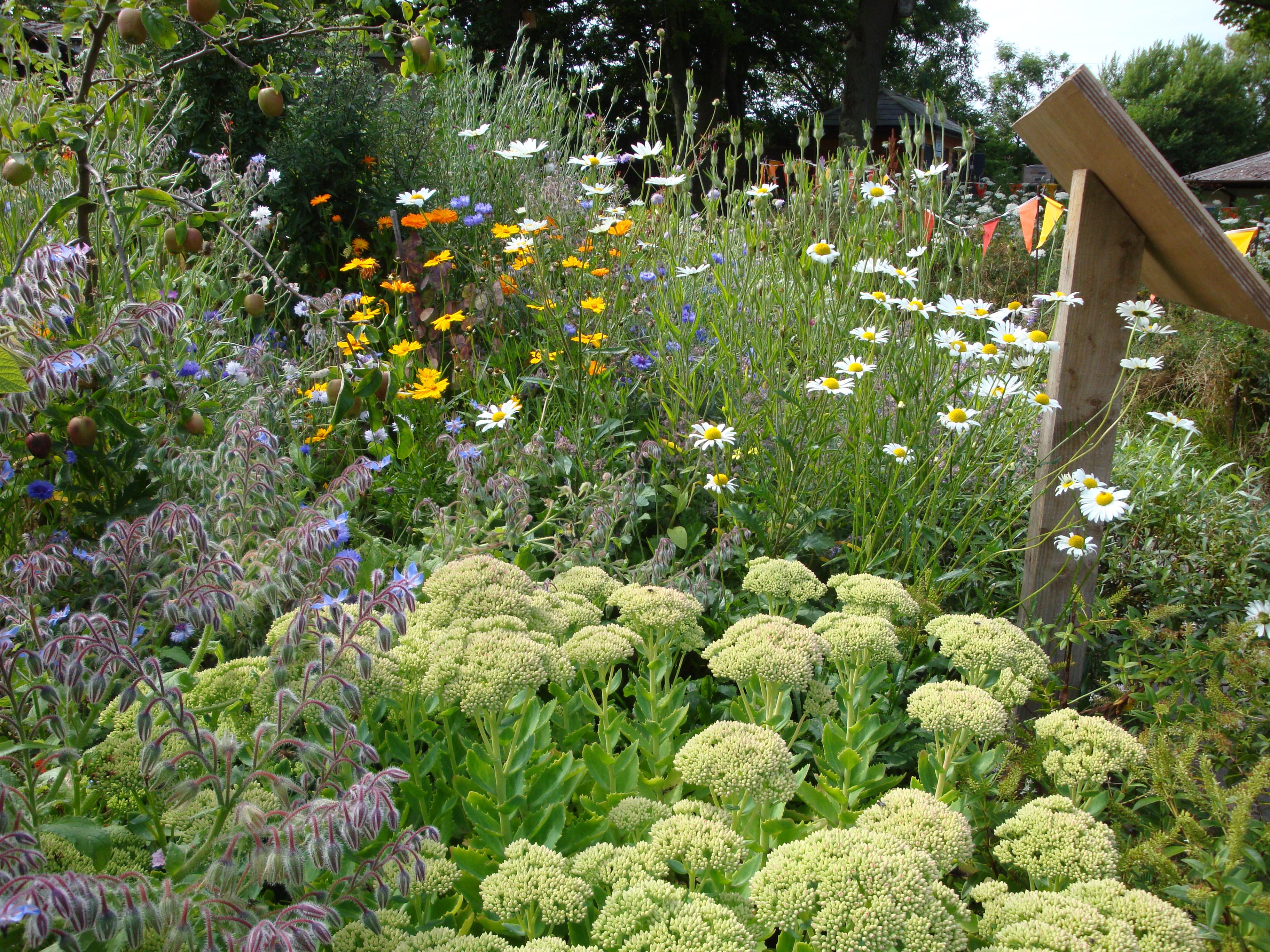 Wyre estuary country park gardens